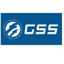 Gssone logo icon