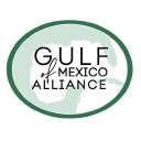 Gulf Of Mexico Alliance logo icon