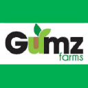 Gumz Farms logo