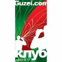 Guzei logo icon