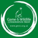 Gwct logo icon