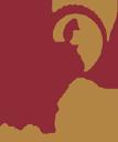 Haden Interactive logo icon