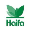 () Haifa Group logo icon