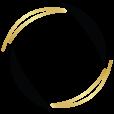 Hair Net logo icon