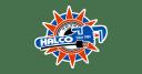 Halco logo icon