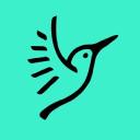 Halcyon logo icon