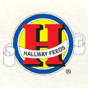 Hallway Feeds logo icon