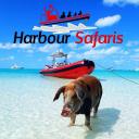 Harbour Safaris logo icon