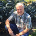 Harvest To Table logo icon
