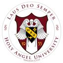 Holy Angel University logo icon
