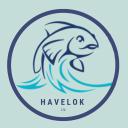 Havelok Ltd logo icon