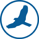 Hawk Soft logo icon