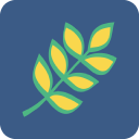 hcarefacilities.com logo icon