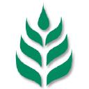 Health Aid logo icon
