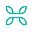Healthcanal logo icon