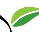 Health Designs logo icon