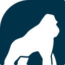 Health Gorilla logo icon