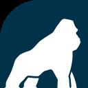 Health Gorilla - Send cold emails to Health Gorilla