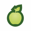 Healthy Options logo icon