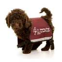Hearing Dogs For Deaf People logo icon