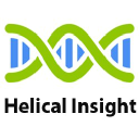 Helical Insight logo icon