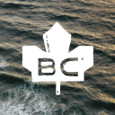 Official Site logo icon