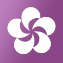 Hellocoton logo icon
