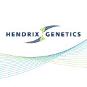 Hendrix Genetics logo icon