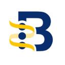 Hepb logo icon