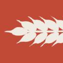 Hewn logo icon
