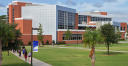 Horry Georgetown         Technical College logo icon