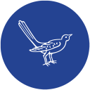 Hinoki & The Bird logo icon