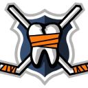 Hockeyfights.Com logo icon