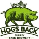 Hogsback logo icon