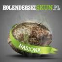 Holenderski Skun logo icon