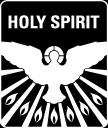 Holy Spirit Catholic Church logo icon
