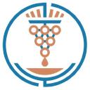 Honest Grapes logo icon