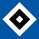 Hsv logo icon