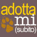 Adottamisubito.it logo