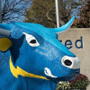 Alfredstate.edu logo