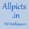 Allpicts.in logo