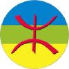 Amezri.co logo