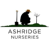 Ashridgetrees.co.uk logo