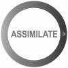 Assimilateinc.com logo