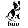 Baopublishing.it logo