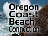 Beachconnection.net logo
