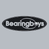 Bearingboys.co.uk logo