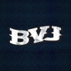 Bigvalleyjamboree.com logo