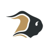 Bisontransport.com logo