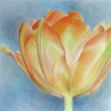 Botanicalartandartists.com logo